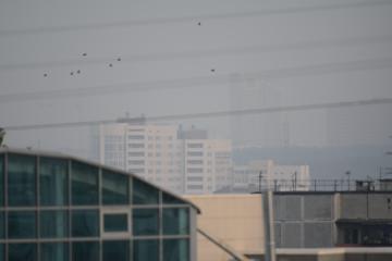 Челябинск в сизом тумане