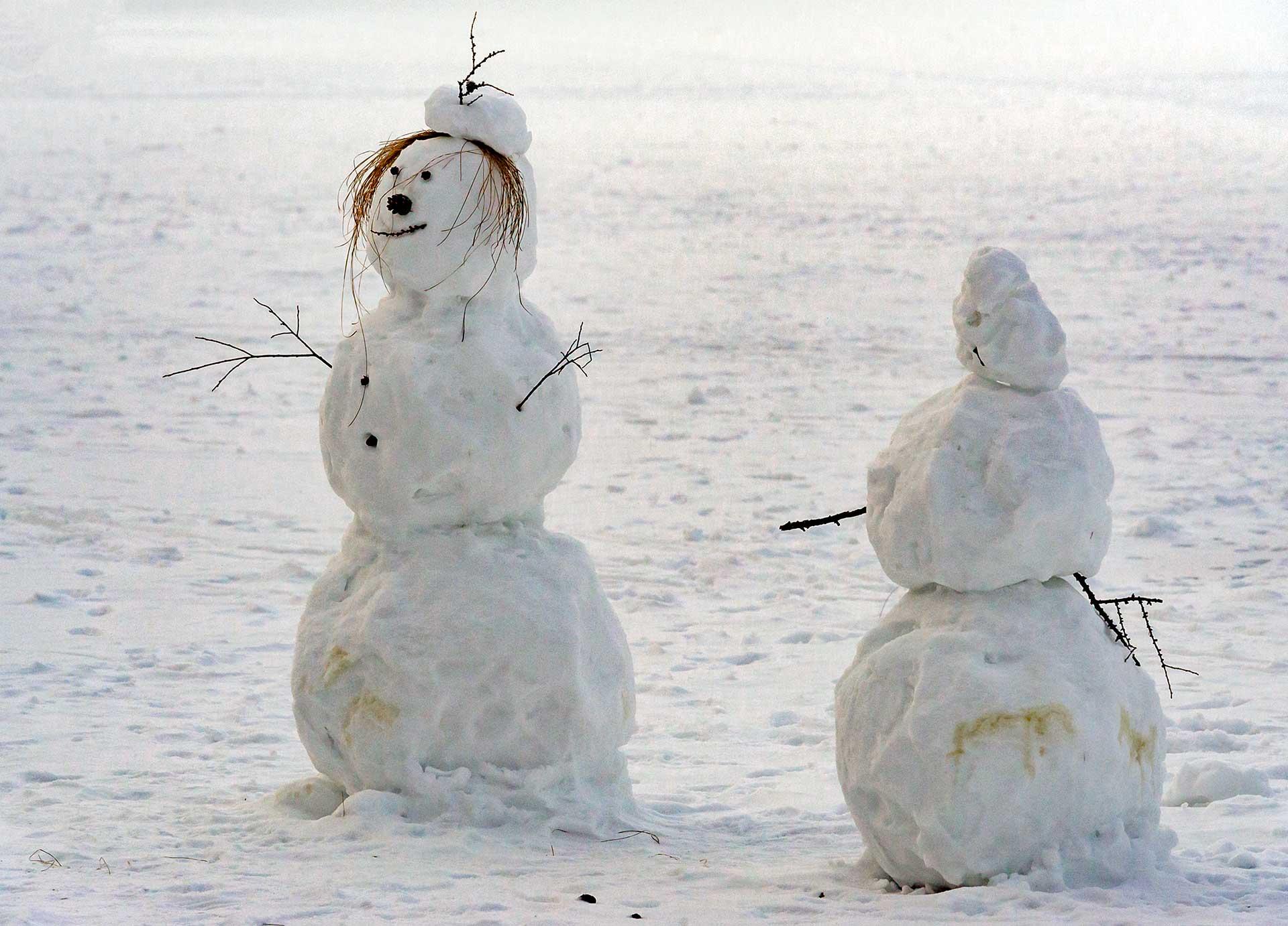 Неунывающая Снежная Баба